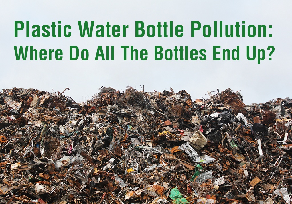 How Many Plastic Bottles End Up In Landfills Each Year ...
