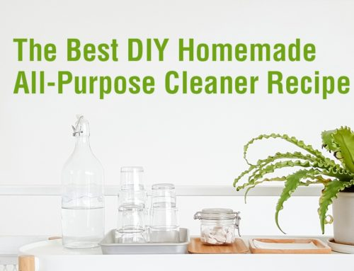 The Best DIY Homemade All-Purpose Cleaner Recipe