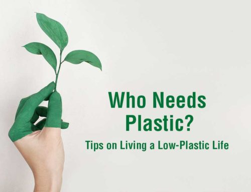 Who Needs Plastic? Tips on Living a Low-Plastic Life